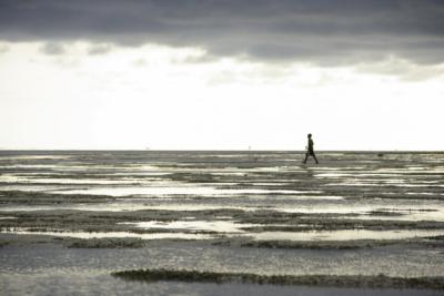 bassa marea 2